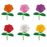 thumbnail_rose